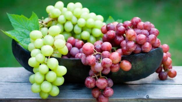 rüyada üzüm görmek ne anlama gelir.