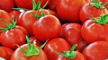 rüyada domates görmek ne anlama gelir.